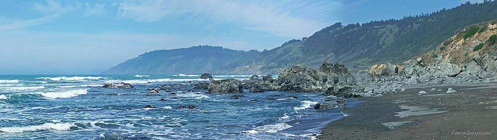 California Beaches 3 by Harold