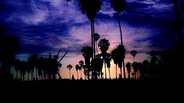 California Blue Sky by Sharon Costa