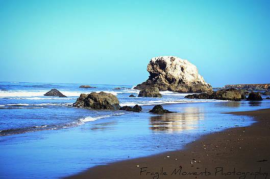 California Central Coast by Brooke Clark