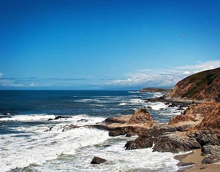 Julie Magers Soulen - California Coast at Bodega Bay