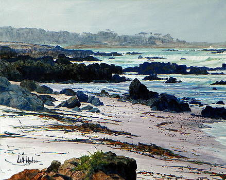 California Coast by Bill Hudson