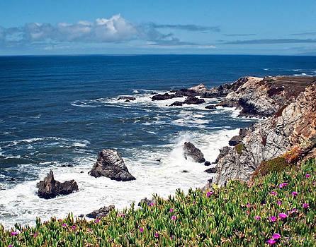 Julie Magers Soulen - California Coast Flowers