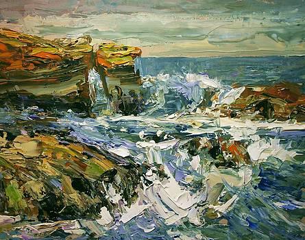 California Coast Ii by Brian Simons