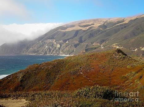 Sophie Vigneault - California Coast