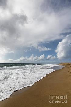 California Coastline in Winter by Susan Gary