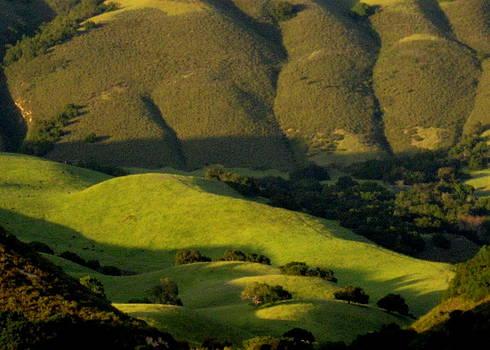 California Dusk by David Olson