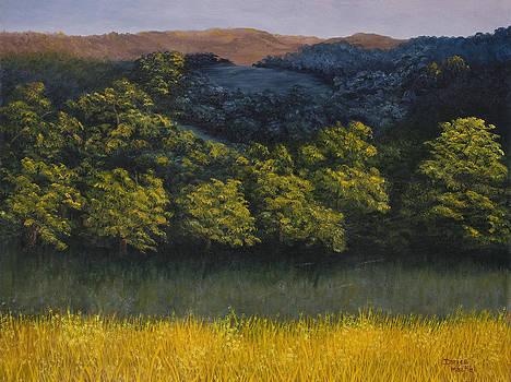Darice Machel McGuire - California Foothills