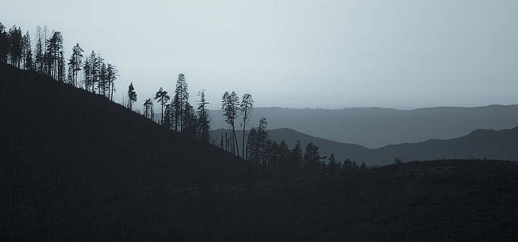 California Gray Skies by Bryant Coffey