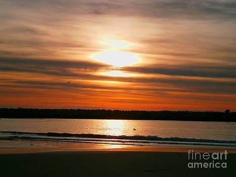 California Sunset by Drew Shourd