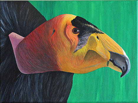 Californian Condor by Aileen Carruthers