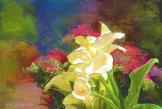 Calla Garden Path by Mary Sylvia Hines