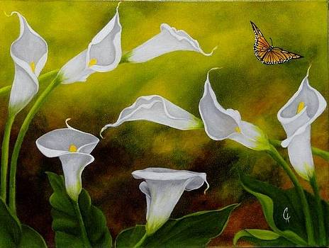 Calla Lilies and Butterfly by Carol Avants