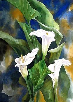 Alfred Ng - calla lily