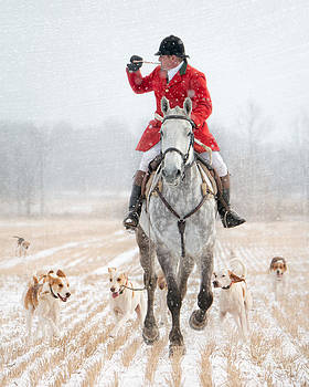 Calling the Hounds Back by Heather Swan