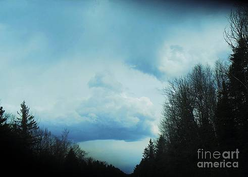 Calm Before Storm by Fawn Whelahan