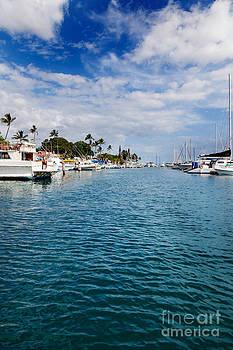 Jo Ann Snover - Calm harbor at Lahaina on Maui
