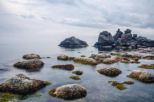 Calm nature by Marco Calandra