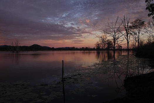 Calming Waters by Debbie Howden