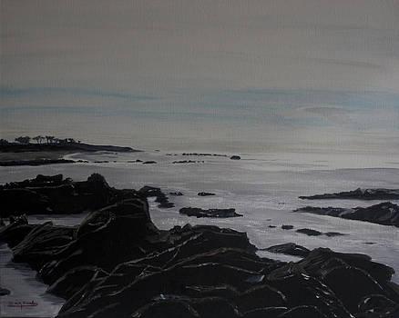 Ian Donley - Cambria Tidal Pools