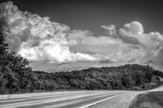 Camden County Highway by Al Griffin