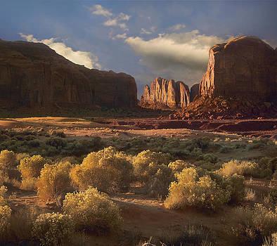 Camel Butte by Tim Fitzharris