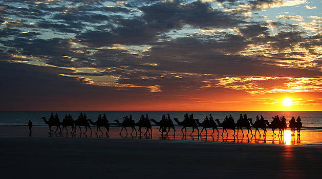 Camel Ride Sunset Cable Beach by Carl Koenig