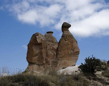 Jared Bendis - Camel Rock