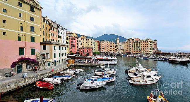 Camogli harbour by Stefano Piccini