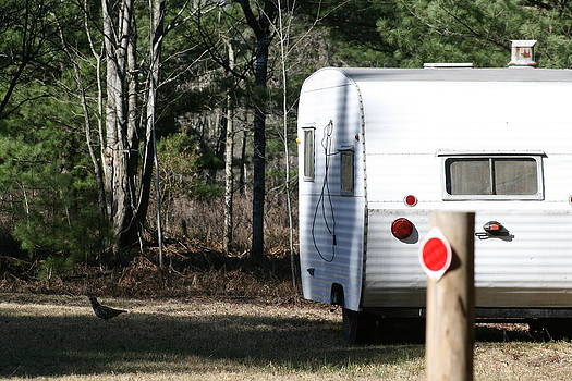 Camper in the Woods by Christine  Miller