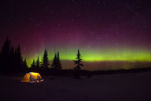 Camping Under the Lights by Steve Burns
