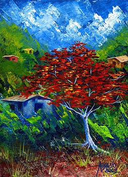 Campo Flamboyan by Alfredo Ocasio