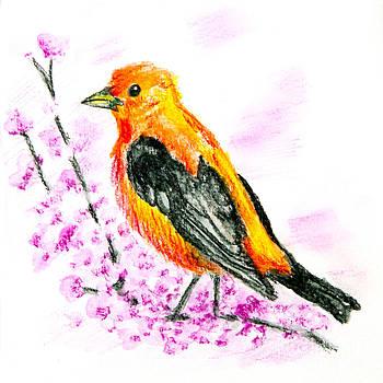 Canary by Monika Wisniewska