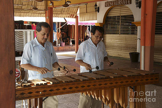 John  Mitchell - Cancun Marimba Players