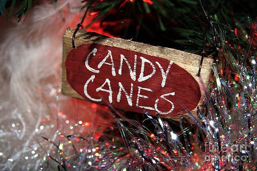 Brenda Giasson - Candy Canes
