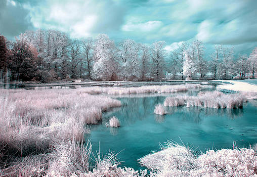 Candyfloss Curling Pond by Catherine Perkinton
