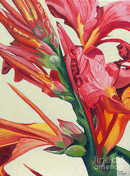 Canna Lily by Annette M Stevenson