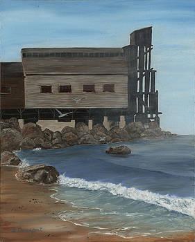 Cannery Row by Sara Davenport