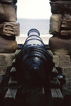 Alasdair Shaw - Cannon