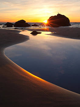 Susan Rovira - Cannon Beach Sunset Vertical