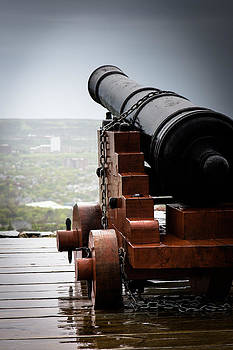 Cannon by David Pinsent