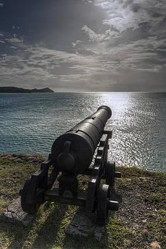 Cannon in Antigua by Pier Giorgio Mariani