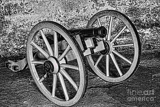 Cannon by Kristy Ollis