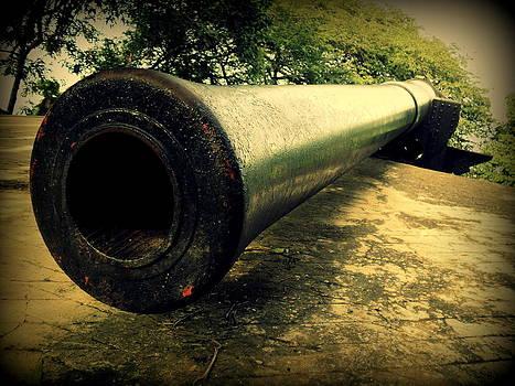 Elephanta Island Cannon by Salman Ravish