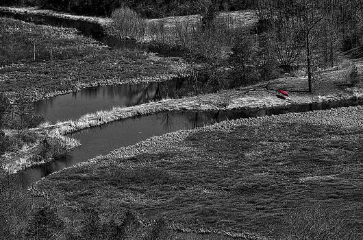 Steven Ralser - Canoe by Creek II