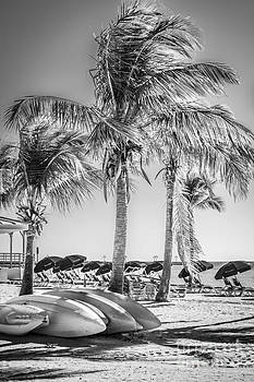 Ian Monk - Canoes and Palms - Higgs Beach Key West - Black and White