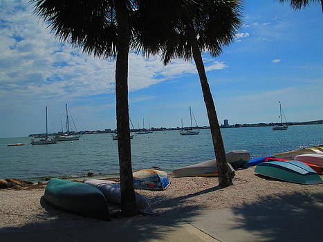 Canoes and Sailboats by Elaine Haakenson