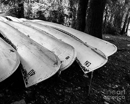 Sonja Quintero - Canoes on Caddo in Black and White