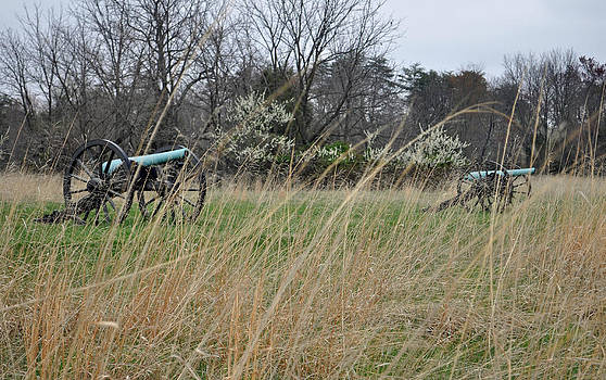 Cannon in the Grasses of Manassas National Battlefield Park by Bruce Gourley