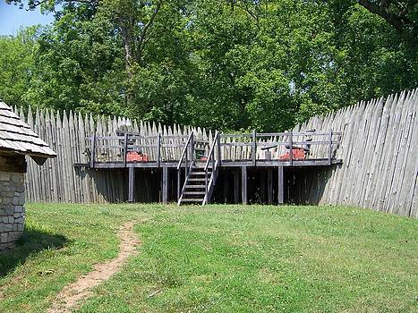 Canons at Fort Loudon by Regina McLeroy