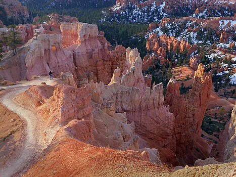 Canyon Photographer by Ed Cooper